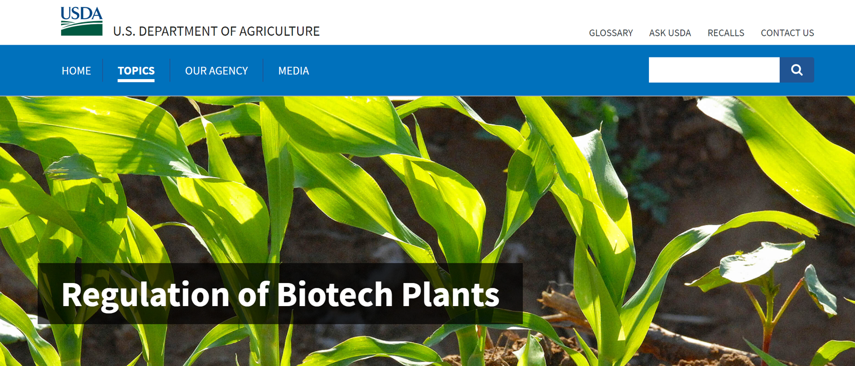 "A screenshot of a page on USDA's website reading: ""Regulation of Biotech Plants"""