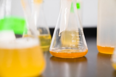 Colored fluids in laboratory flasks